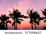 Silhouettes Of Coconut Trees A...