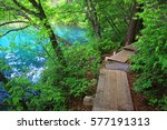 a beautiful swamp of japan.  | Shutterstock . vector #577191313