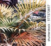 Yellow Green Palm Leaf Digital...