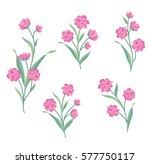 floral bouquet set. wild ... | Shutterstock .eps vector #577750117