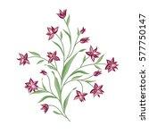 floral bouquet set. wild ... | Shutterstock .eps vector #577750147