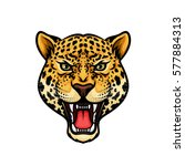 jaguar head isolated cartoon... | Shutterstock .eps vector #577884313