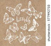 butterflies. vector set.... | Shutterstock .eps vector #577992733