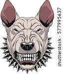 vector illustration angry... | Shutterstock .eps vector #577995637