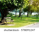 a bench under a tree park in...