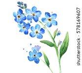 Stock photo blue wild flowers watercolor illustration 578169607