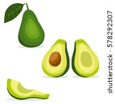 avocado  avocado icon  tropical ... | Shutterstock .eps vector #578292307