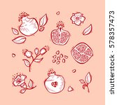 hand drawn doodle fruits.... | Shutterstock .eps vector #578357473