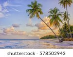 paradise nature  palm trees on...   Shutterstock . vector #578502943