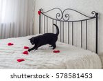 romantic decoration with red... | Shutterstock . vector #578581453
