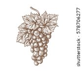 grapes engraving vector... | Shutterstock .eps vector #578706277