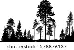illustration with high pine in... | Shutterstock .eps vector #578876137