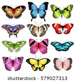 Stock vector collection of original vector illustrations of colorful butterfly insects 579027313