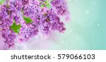 Bush Of  Of Purple Lilac...