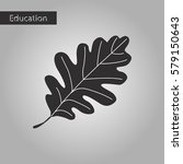 oak leaf black and white style... | Shutterstock .eps vector #579150643