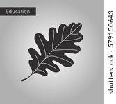 oak leaf black and white style... | Shutterstock .eps vector #579150643