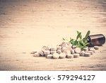 medicine herb. herbal pills... | Shutterstock . vector #579294127
