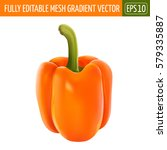 orange pepper on white... | Shutterstock .eps vector #579335887