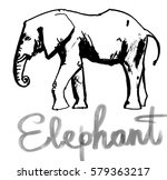 the elephant figure  animal... | Shutterstock .eps vector #579363217
