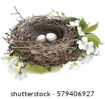 Bird's Nest. Hand Drawn Vector...