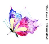butterfly watercolor  isolated... | Shutterstock . vector #579457903