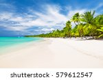 coconut palm trees on white... | Shutterstock . vector #579612547