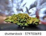 detail view on the bud of the... | Shutterstock . vector #579703693