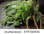 mix of fresh italian herbs from ... | Shutterstock . vector #579730543