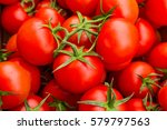 red tomatoes background. group... | Shutterstock . vector #579797563