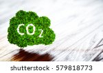 green ecology co2 icon on...   Shutterstock . vector #579818773