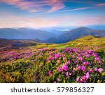 colorful summer sunrise with... | Shutterstock . vector #579856327