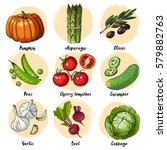 set of drawn colored vegetables.... | Shutterstock .eps vector #579882763