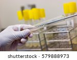 scientist performing microbial... | Shutterstock . vector #579888973