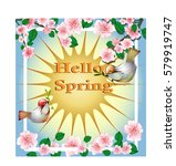 hello spring  greeting card ... | Shutterstock .eps vector #579919747