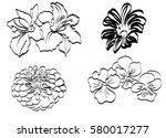 random flowers set | Shutterstock .eps vector #580017277