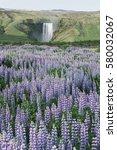 skogafoss waterfall  iceland ... | Shutterstock . vector #580032067