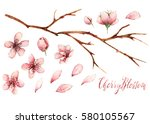 cherry blossom watercolor... | Shutterstock . vector #580105567