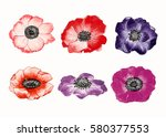 anemone flowers and leaves ... | Shutterstock . vector #580377553