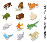 isometric domestic animals pets ... | Shutterstock .eps vector #580742137