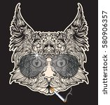 vector face of cat with aviator ... | Shutterstock .eps vector #580906357