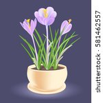 spring flower in a flowerpot....   Shutterstock .eps vector #581462557
