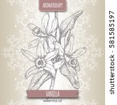 vanilla planifolia aka vanilla... | Shutterstock .eps vector #581585197