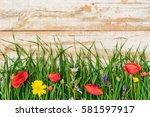 Beautiful Spring Time  Bloomin...