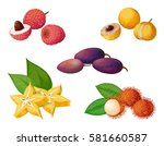 vector set of exotic fruits and ... | Shutterstock .eps vector #581660587