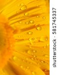 Macro Water Texture On Yellow...