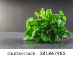 a bunch of mint tied with twine ... | Shutterstock . vector #581867983