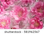 beautiful flowers of white and... | Shutterstock . vector #581962567