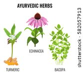 ayurvedic herbs set isolated on ... | Shutterstock .eps vector #582057913