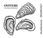 oysters engraving vector...