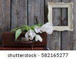 floral composition with soft...   Shutterstock . vector #582165277